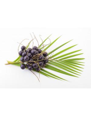 huile-acai-bio-anti-age-palmier-amazonie-ethique-cheveux-eclat-protecteur-pollution-pur-naturel